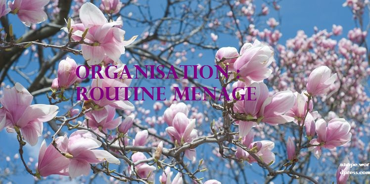 Ménage, routine, organisation, organisation quotidienne, clean home, home cleaning, routine, vie de famille